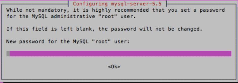 setting mysql-server password